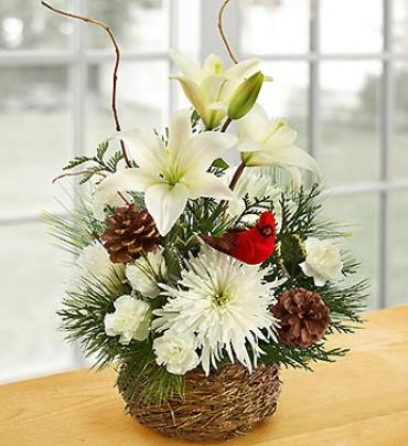 Wintertime Bird\'s Nest of Flowers