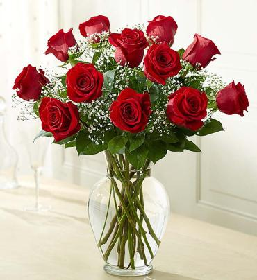 Rose Eleganc Premium Long Stem Red Roses