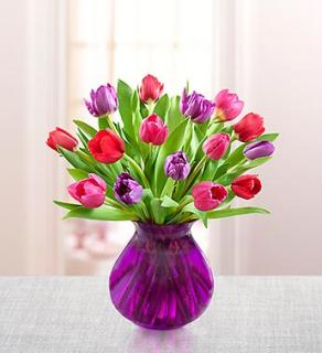 Tulips for Sweetheart